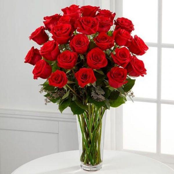 Dozen Roses 1