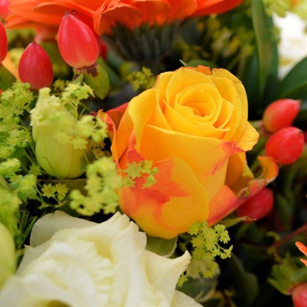 Golden Moments - Yellows & Orange 1