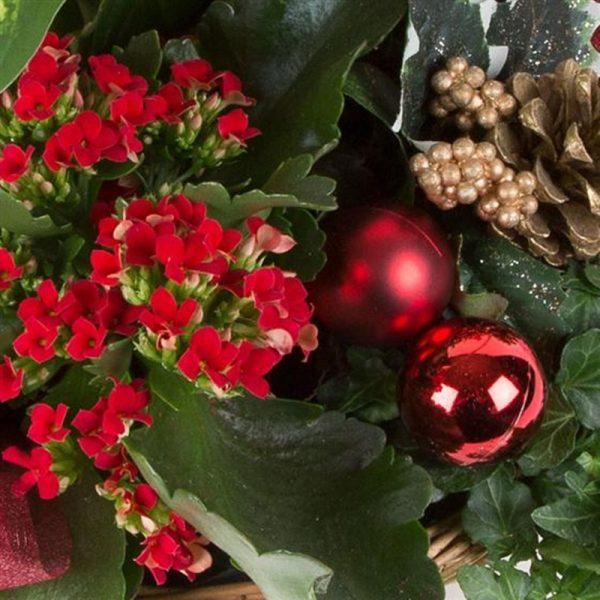 Christmas Planted Basket 1