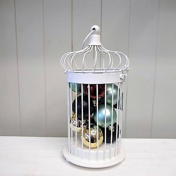 Bird Cage 1